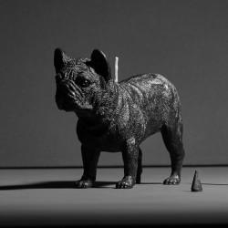 Bulldog X CANDLE