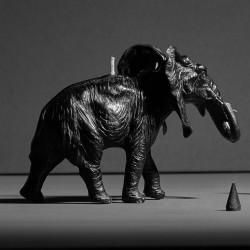 Elephant X CANDLE