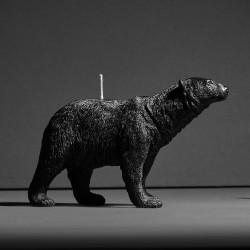 Polar bear X CANDLE