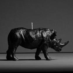 Rhino X CANDLE