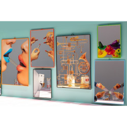 PlasticMirrors_ToiletPaper